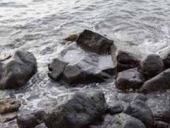 ハウオラの石/Hauola Stone