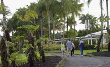 ナニ・マウ・ガーデン/Nani Mau Garden