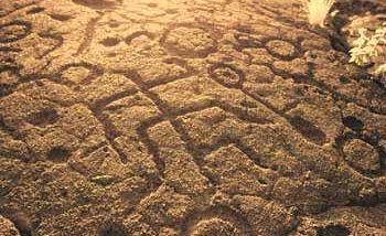 アナエホ・オマル・ペトログリフ/Anaeho-Omalu Petroglyphs