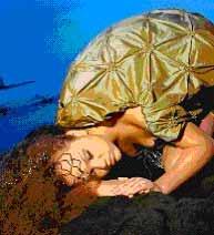 フラの名門ハラウがハワイの神話をショーにして日本上陸
