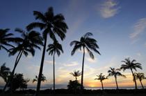 2010年12月のハワイ渡航者数は11万4990人。2010年は122万人を突破!