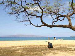 ビッグ&リトルビーチ/Big and Little Beach