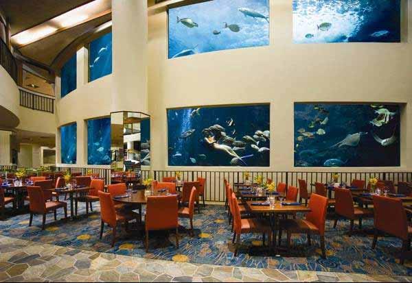巨大な水槽のあるレストラン「オーシャナリウム(Oceanarium restaurant)」