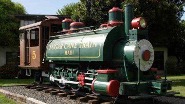 砂糖キビ列車/Sugar Cane Train
