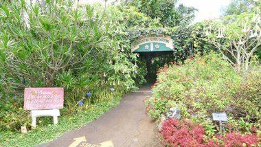 エンチャンティング・フローラル・ガーデン/Enchanting Floral Gardens