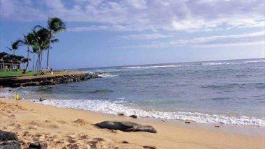 ポイプビーチ /Poipu Beach