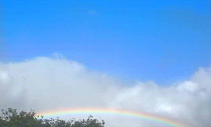 ハワイの虹は7 色じゃなくて6 色!?