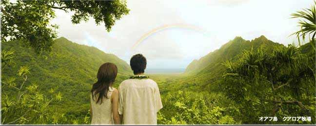 ハワイ挙式が人気な理由