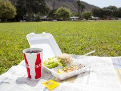 ハワイのおすすめワンプレートランチ4選 【厳選!ホノルル定番&最新グルメ②~Lunch~】