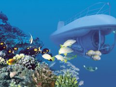 【人気ツアー特集】潜水艦でワイキキの海底を快適クルーズ