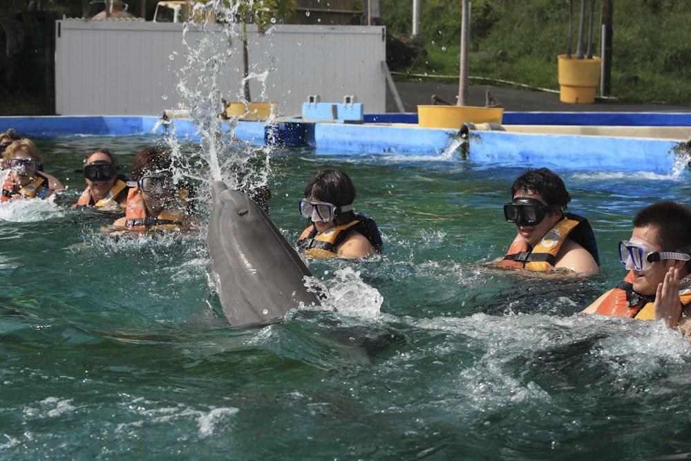 シーライフ・パーク・ハワイ/Sea Life Park