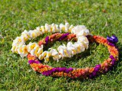 【コラム】ハワイ文化の基礎知識/レイ