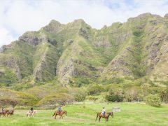クアロア・ランチ/Kualoa Ranch Hawaii