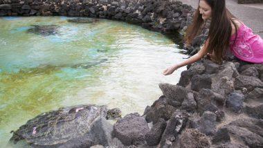 ハワイでしか経験できない、愛らしい動物たちに出合える&触れ合えるスポット4選