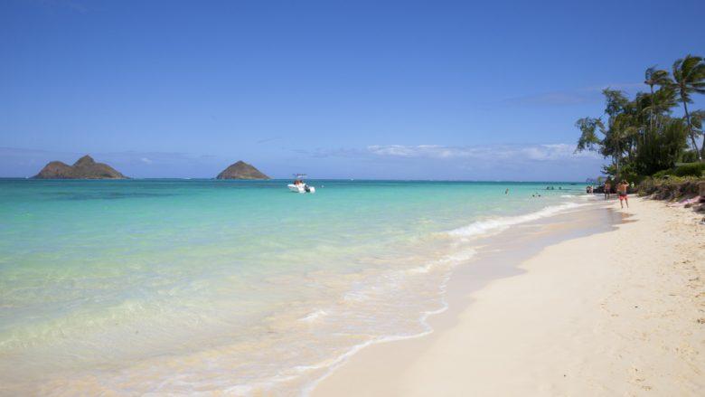 全米No.1に輝くビーチまで、わずか$2.50!「ザ・バス」で行くカイルアの街