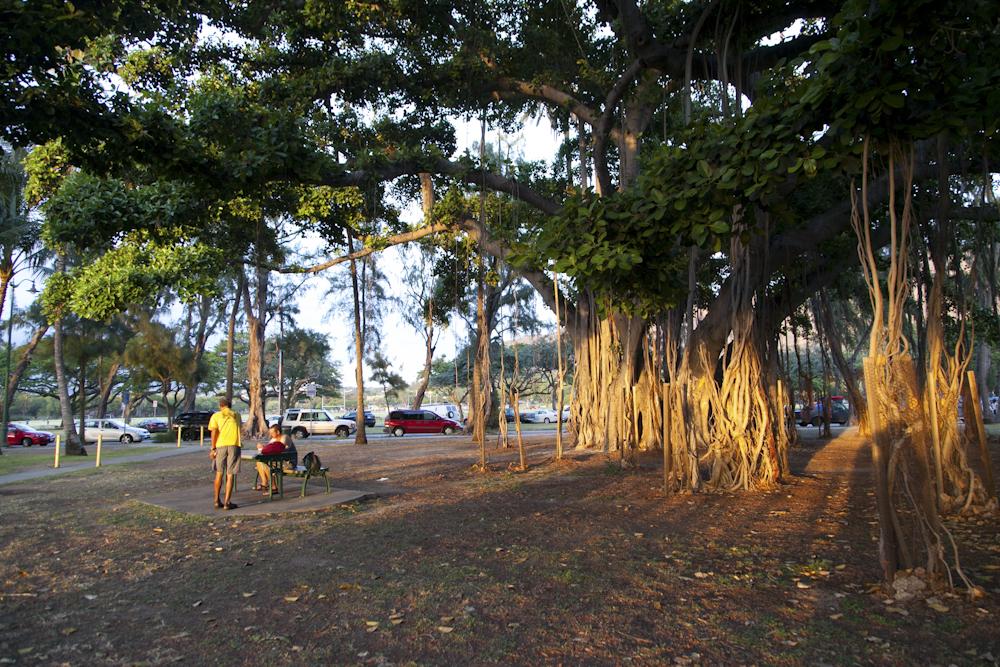 カピオラニ公園/Kapiolani Park