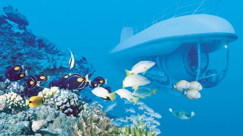 未体験の楽しさ満載!ハワイの街や海をぐるりと巡るライド系アクティビティ5選