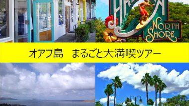 ブルーウェーブツアー/Blue Wave Tour, Inc.