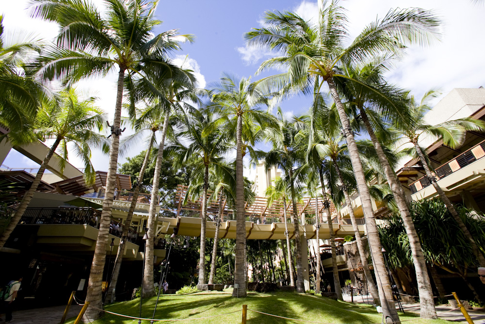 Royalr hawaiian center/ロイヤル・ハワイアン・センター(フラの無料レッスン&フラショー)