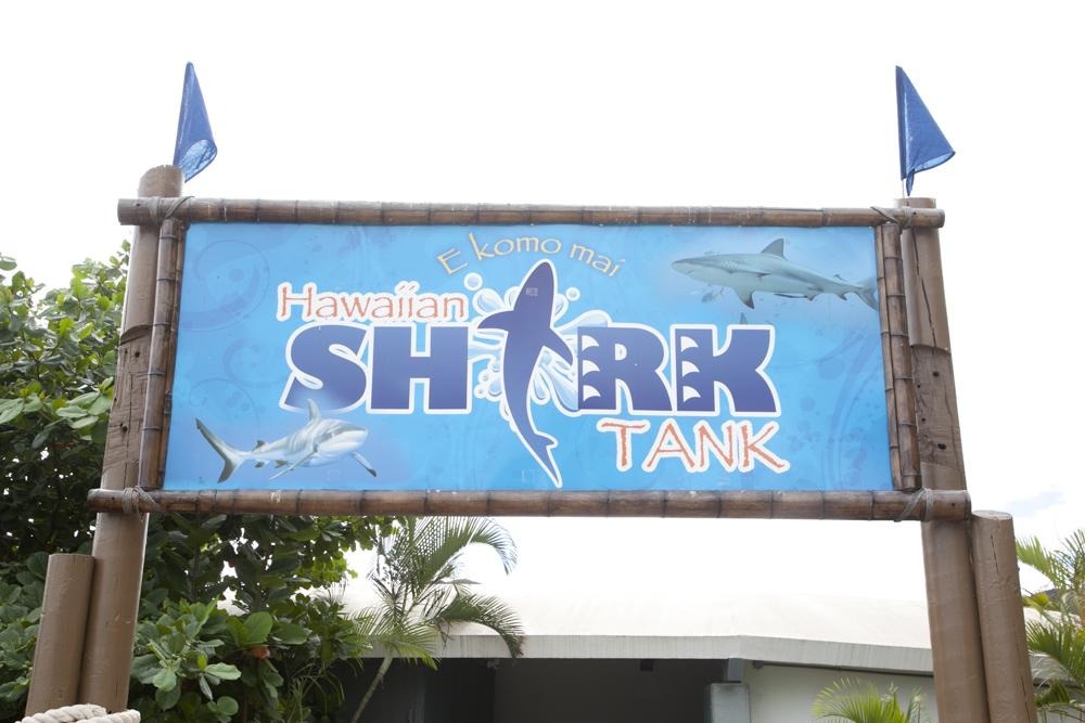 シーライフ・パーク/Sea Life Park