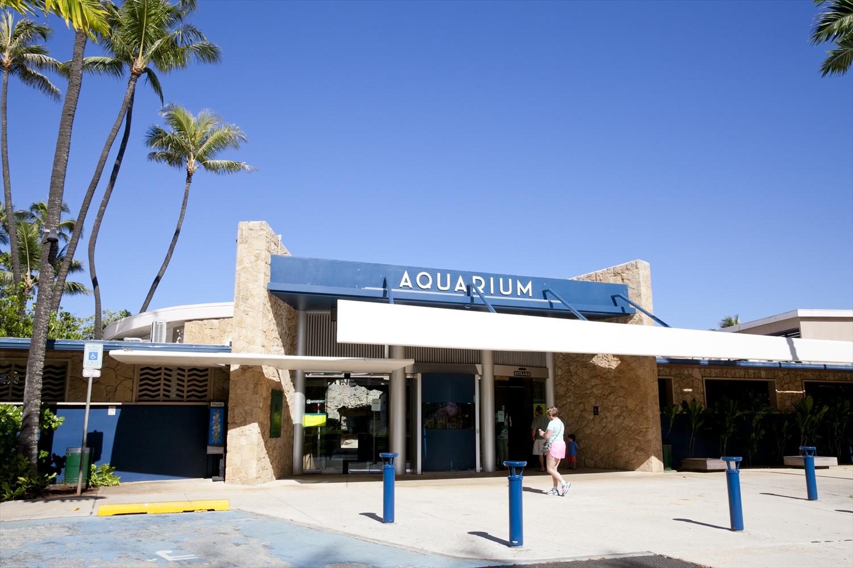 ワイキキ水族館/Waikiki Aquarium