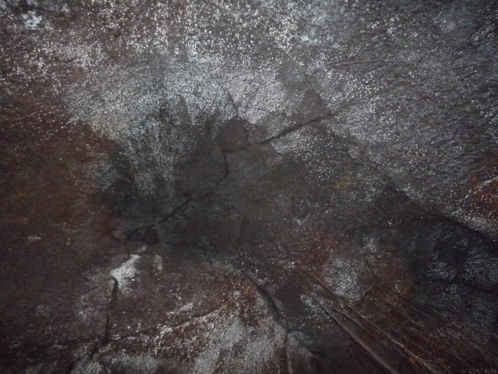 サーストン・ラバ・チューブ/Thurston Lava Tube
