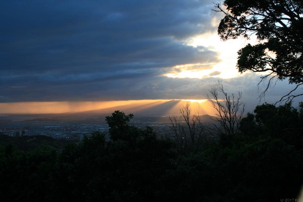 タンタラスの丘/Tantalus Lookout
