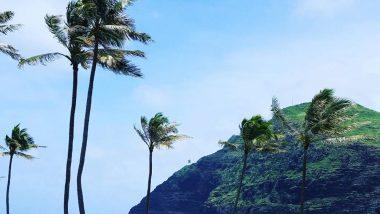 """HAWAIIでキレイになる!リーズナブルに体験できる""""美活""""をご提案"""