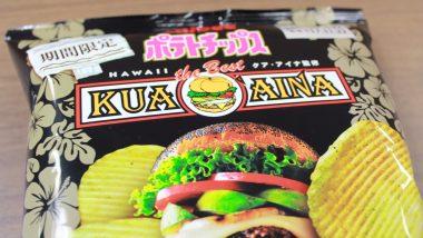 もう食べた?全国のコンビニで買える期間限定ハワイの味「ポテトチップス 厚切りモッツァレラアボカドバーガー味」