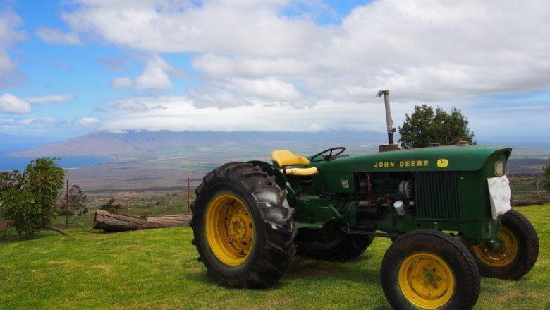 【マウイ島】ハレアカラ国立公園周辺の観光スポット