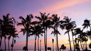 ハワイ観光はまずココから!ワイキキの代表的なスポット