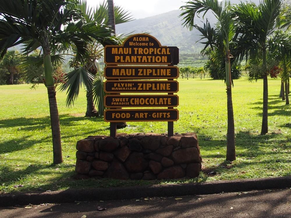 マウイ・ジップライン・カンパニー/Maui Zipline Company