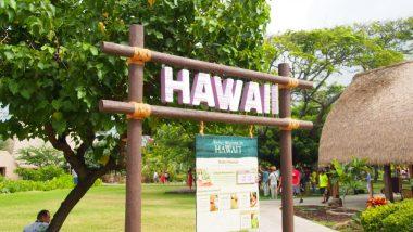 ハワイの伝統文化「フラ」に親しめる4スポット