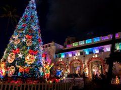 メレカリキマカ!ハワイのクリスマスとは?