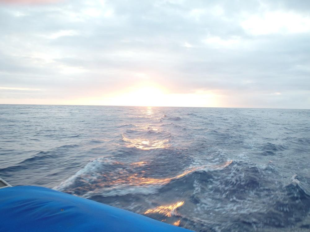西オアフ・サンセットクルーズ/Sunset Cruise West Oahu