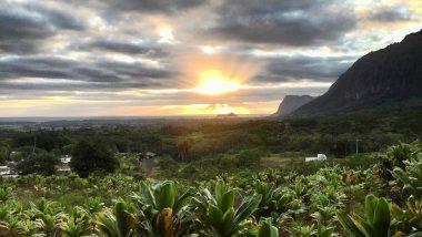 ネイティヴハワイアンによる独立自治国「ネイション・オブ・ハワイ」とは?