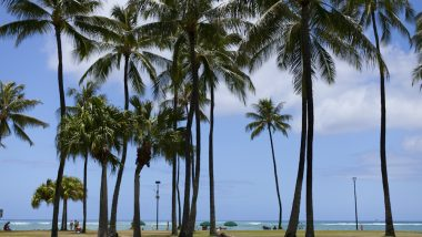 「2度目のハワイ」こんなことにチャレンジしてみるのはいかが