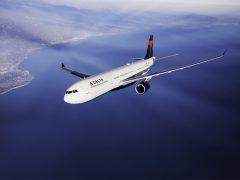 【デルタ航空】充実の機内でハワイへの旅を徹底サポート
