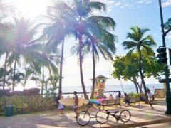 ハワイ旅行は初日が勝負!? 1日目を充実して過ごせるプラン♪