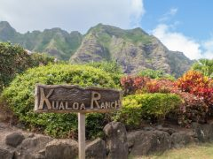 ハワイで大自然を感じたい方へ!レンタカーで行くクアロアランチ♪