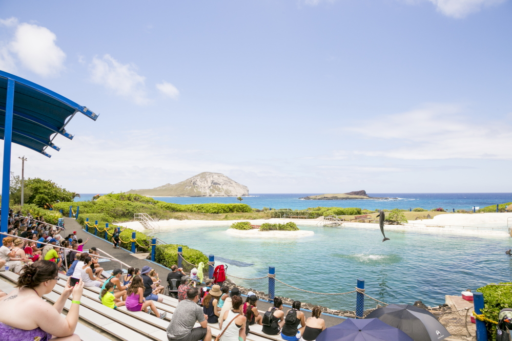 シーライフ・パーク/Sea Life Park Hawaii