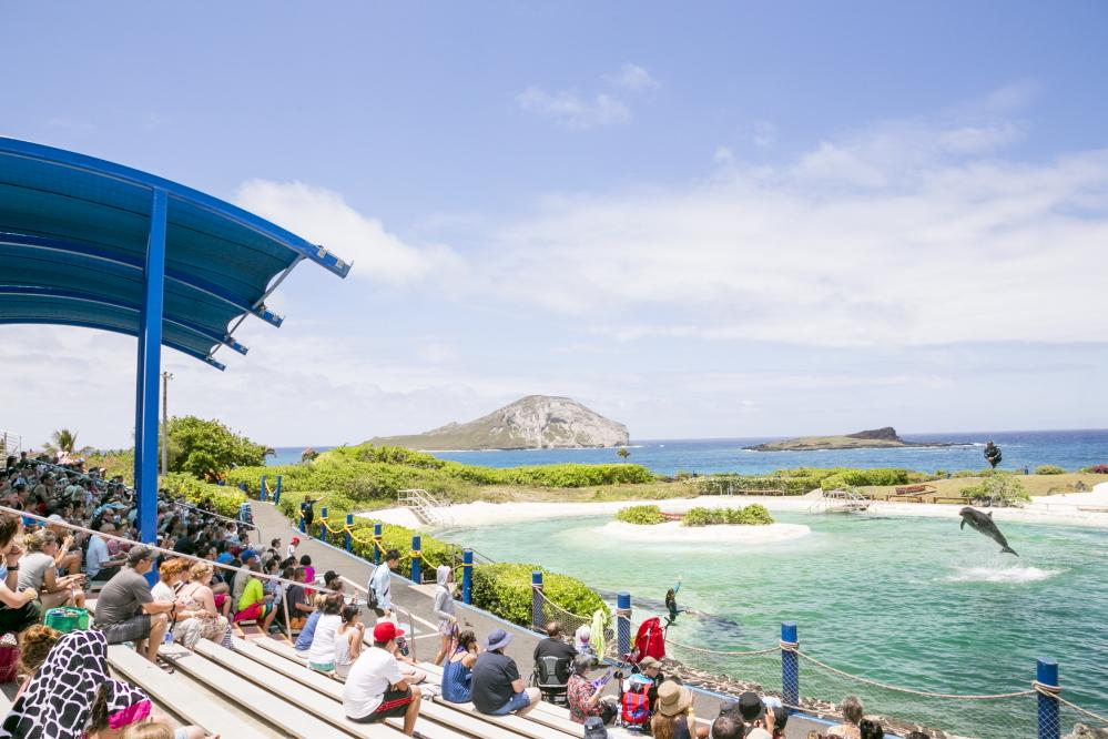シーライフ・パーク・ハワイ/Sea Life Park Hawaii