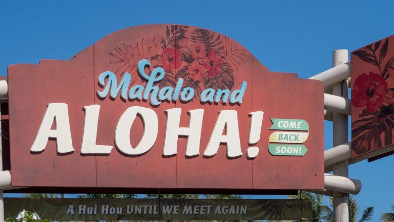 ハワイのおしゃれが手に入る。アンテナショップ「ALOHA1246」が自由が丘にオープン!