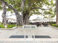 ザ・ビーチ・バー/The Beach Bar