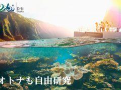 オトナとコドモの夏の自由研究 「オービィ大阪Hawaiiイベント」今夏開催