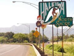 【2021年版】「ザ・ハワイ」を写真に収めよう!一度は行くべき王道の写真スポット5選