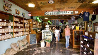 コナだけじゃない! ハワイの個性豊かなコーヒー農園&生産者