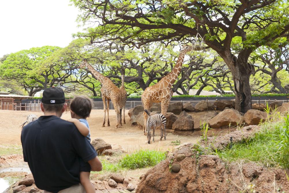 ホノルル動物園/Honolulu Zoo