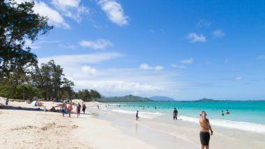 ハネムーンでハワイに行くなら♡ぜひ訪れたいスポット5選
