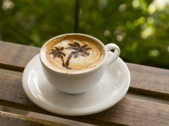 あのカフェが復活!まだまだ話題のカカアコSALT